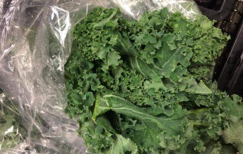 Kale & Kickboxing